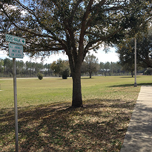 rest area dog walk that way